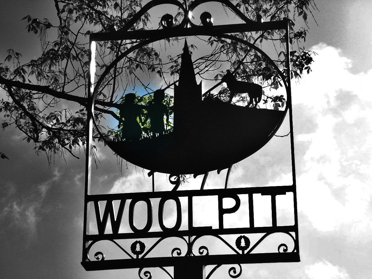 LOS NIÑOS VERDES DE…¿Woolpit o Banjos?
